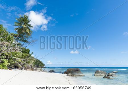 Beach Of Tropical Island