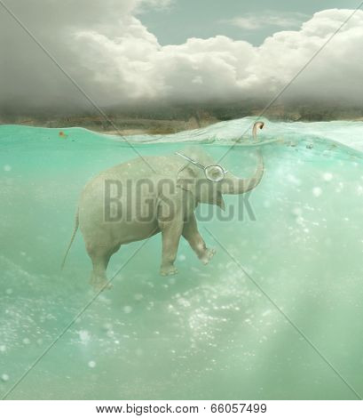 Submarine Elephant
