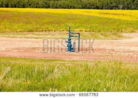 Natural Gas Wellhead Alberta Canada Grassland