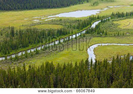 Marshland River Riparian Wetland Landscape