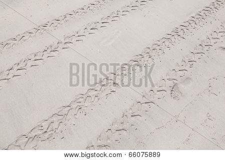 Atv Tracks On The White Sand Beach