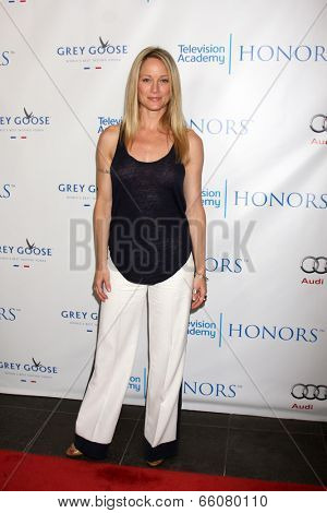 LOS ANGELES - JUN 1:  Teri Polo at the 7th Annual Television Academy Honors at SLS Hotel on June 1, 2014 in Los Angeles, CA