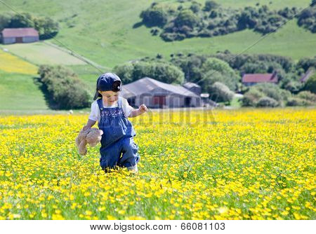 Baby Girl With A Soft Toy In Her Hands Walking In The Field Full Of Buttercups