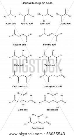 Structural Chemical Formulas Of Basic Bioorganic Acids