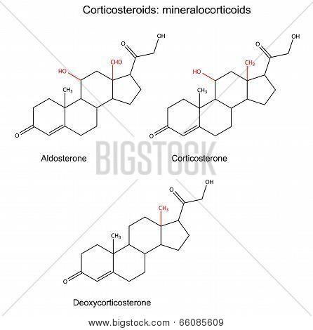 Structural Chemical Formulas Of Corticosteroids - Mineralocorticoids