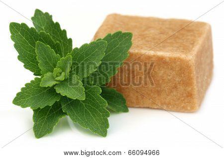 Bangladeshi Sweets Named As Sandesh With Stevia