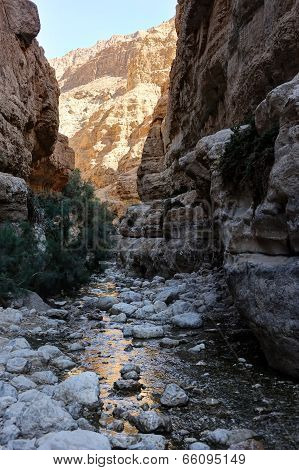 Mountains And Water In The Ein Gedi Nature Reserve