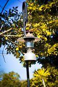 image of kerosene lamp  - Vintage fashioned rustic kerosene oil lantern lamp - JPG