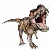 image of tyrannosaurus  - Computer generated 3D illustration with the Dinosaur Tyrannosaurus Rex isolated on white background - JPG