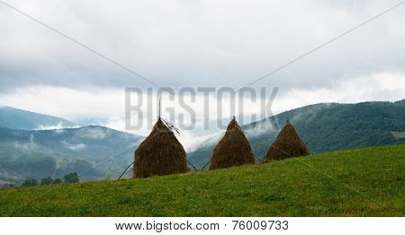 Three Haystacks In The Ukrainian Carpathians