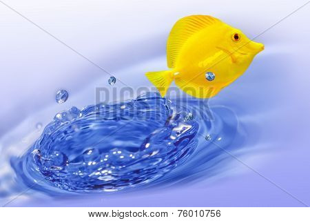 Yellow Tang Fish