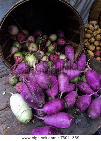 Yellow abd purple radish at the farmers