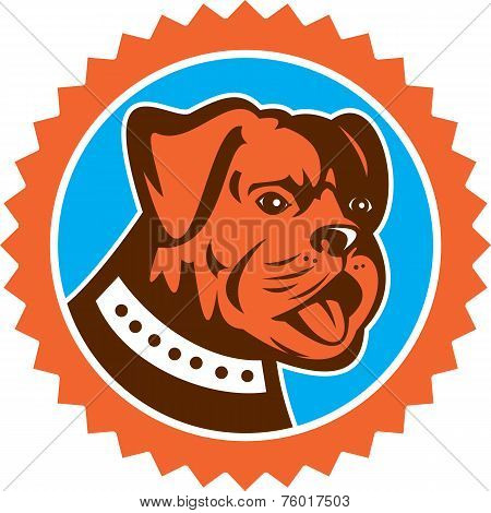 Bulldog Dog Mongrel Head Mascot Rosette