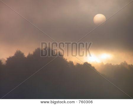 Disturbing dawn.
