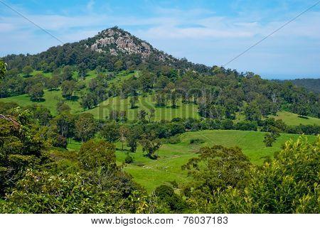 Mount Gulaga (dromedary), Tilba, Australia