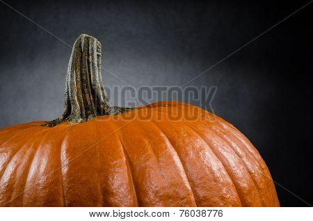 Studio pumpkin