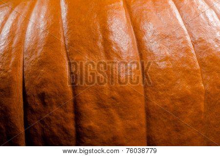 Pumpkin texture