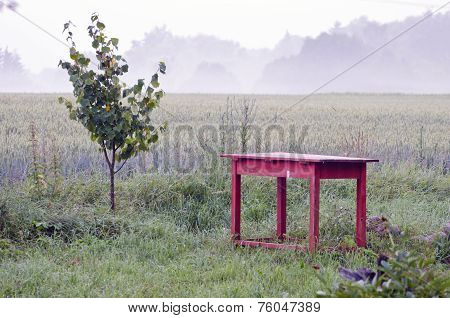 Old Red Table And Morning Mist In Farm Garden