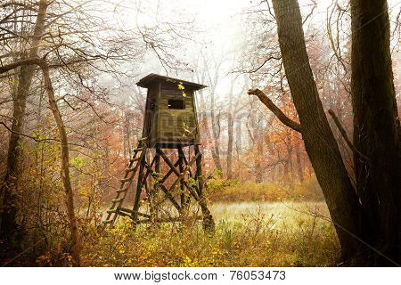 Hunting Pulpit In Forest At Sunrise, Poland.