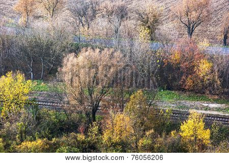 Colorful Autumn Trees, Road And Rail