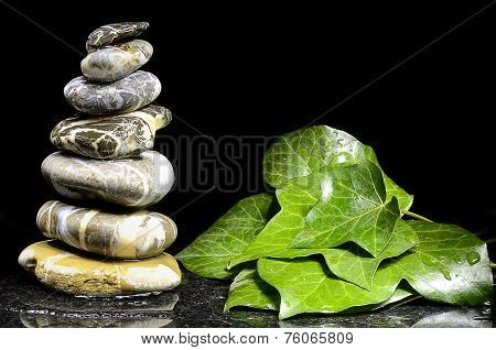 Stacks Of Pebbles And Ivy Leaves