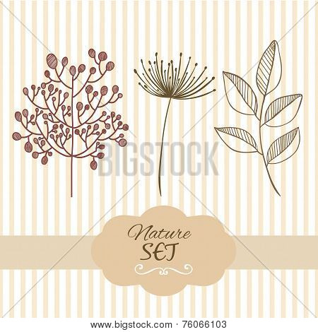Botanical brunch nature set elements. Hand drawn illustration