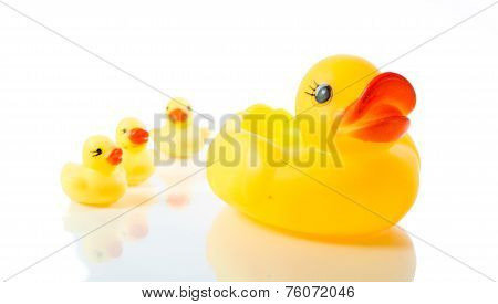 Yellow Rubber Duck Isolate