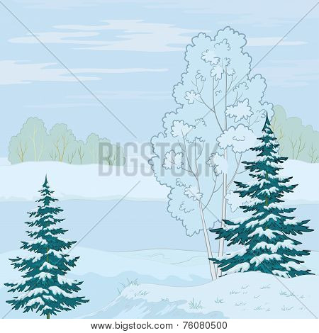 Winter landscape. Tree on the shore