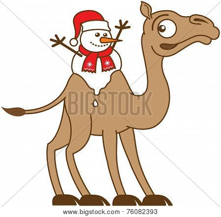 Christmas snowman melting on a camel's back