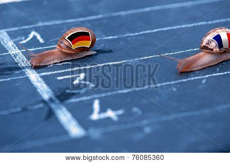 Snails Race Metaphor About Germany Against France
