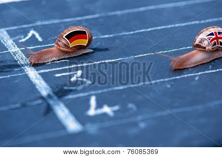 Snails Race Metaphor About Germany Against England