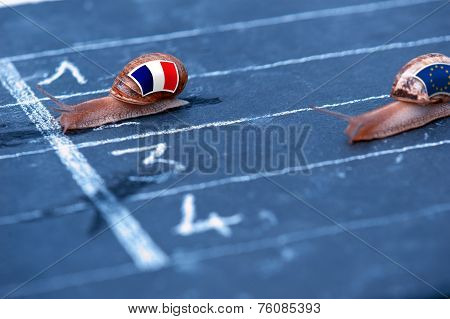 Snails Race Metaphor About France Against Europe