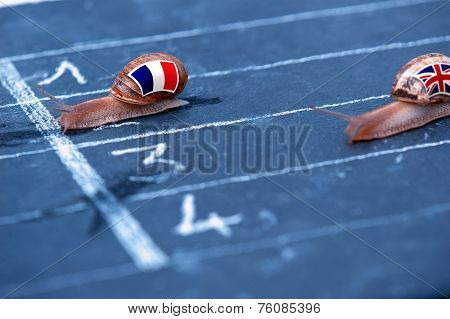 Snails Race Metaphor About France Against England