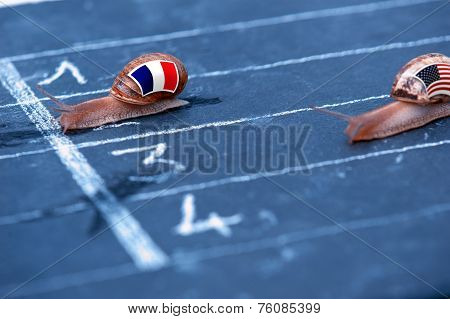 Snails Race Metaphor About France Against Usa