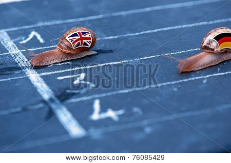 Snails Race Metaphor About England Against Germany