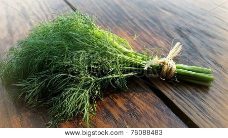 Dill on wooden table