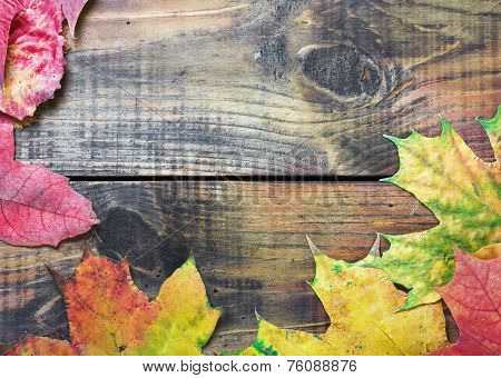 Autumn Leaves Over Old Wooden