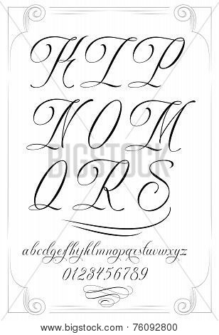 Handmade vector calligraphy
