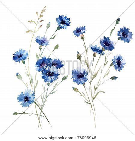 Blue flowers 8