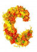 foto of initials  - Initials letter C - JPG