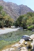 foto of oman  - Warm springs of Ain A - JPG
