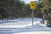 stock photo of cape-cod  - Unexpected sign on a cold winter day on Cape Cod