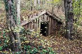 pic of mud-hut  - Old dugout in the deciduous forest. Natural theme.