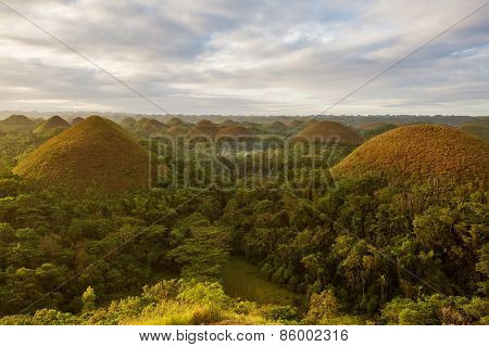 View of The Chocolate Hills. Bohol Philippines