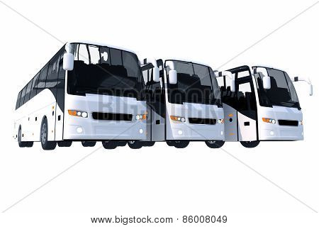 Three Modern Buses Isolated