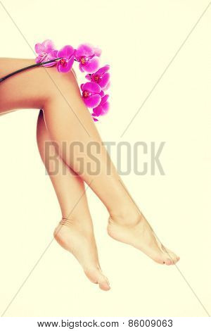Beautiful female legs and an orchid flower.