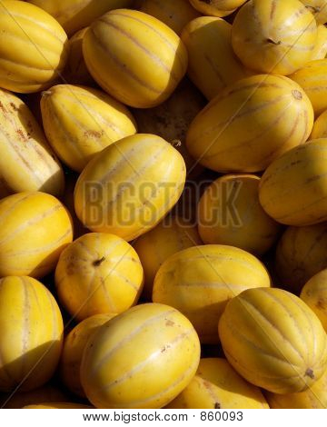 yellowmelons