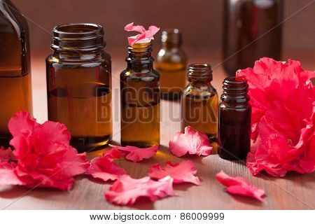 essential oil azalea flowers on dark rustic background