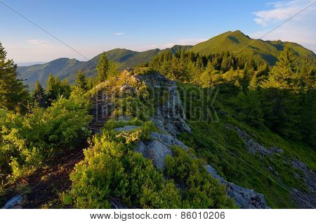 Summer in the mountains. Evening Landscape