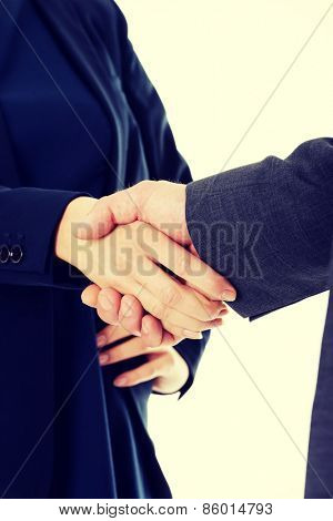 Handshake of two business people.